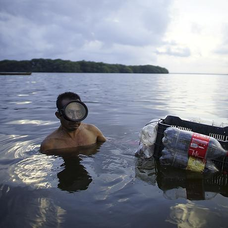Mexiko: Erdöl gegen Austernfischer und Mangroven