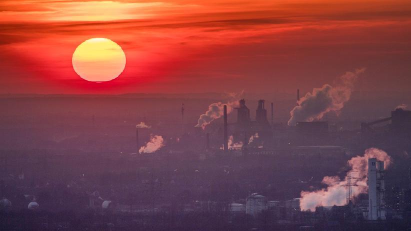 """Klimaschutz: """"Das Wichtigste? Ein CO2-Preis, möglichst schnell"""""""