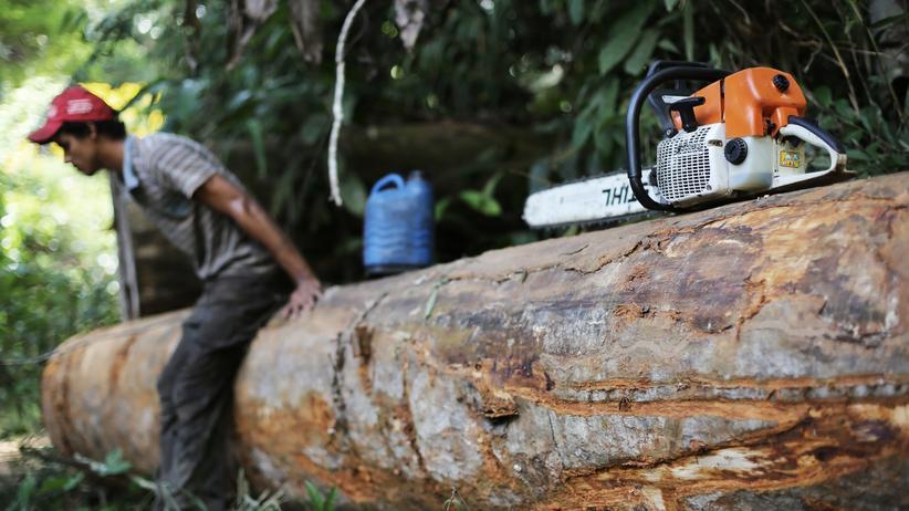 Brasilien: Da ansetzen, wo es wehtut