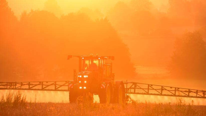 Gesundheitsrisiken: Glyphosat-Einsatz in der Landwirtschaft