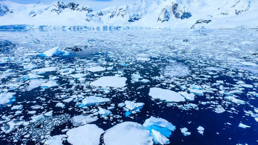 Weltwirtschaftsforum: Paradise Bay in der Antarktis