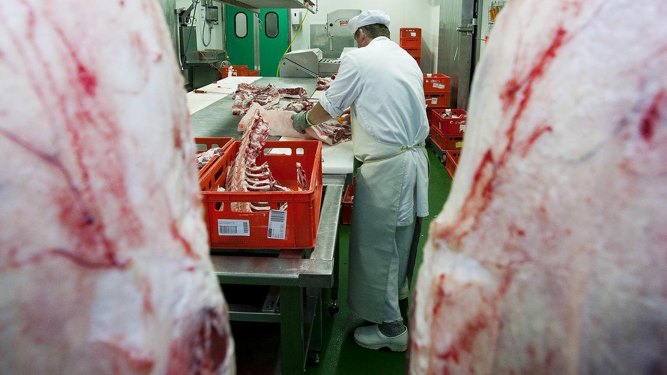 Mehrere Infizierte in österreichischen Fleischbetrieben