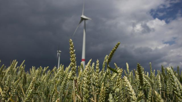 Erneuerbare Energien: Bund muss Förderungen für alte Windräder beenden