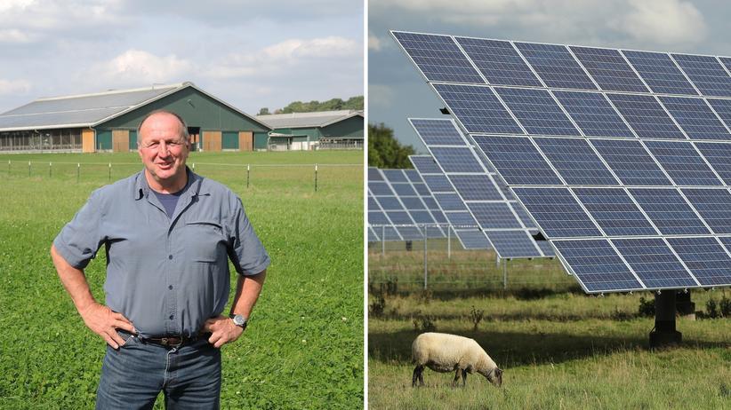 Solarpark: Sonnewalde kämpft um die Sonne