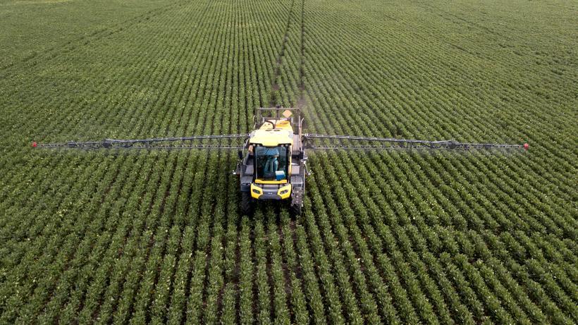 Glyphosat: Auch hier kommt Glyphosat aus dem Hause Bayer/Monsanto zum Einsatz: ein Feld mit Sojapflanzen im Nordwesten Argentiniens