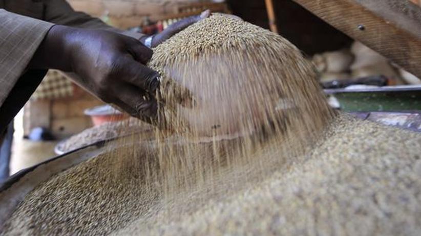 Getreidemarkt: Die Rohstoff-Zocker