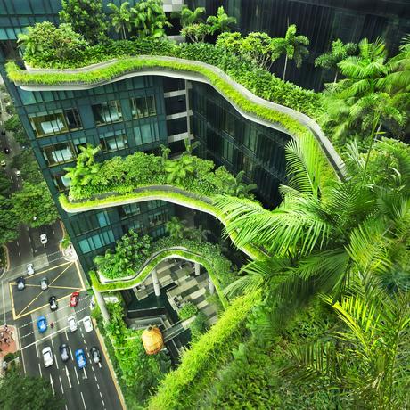 Ziel 11: Menschenfreundliche Städte: Im Dickicht der Städte