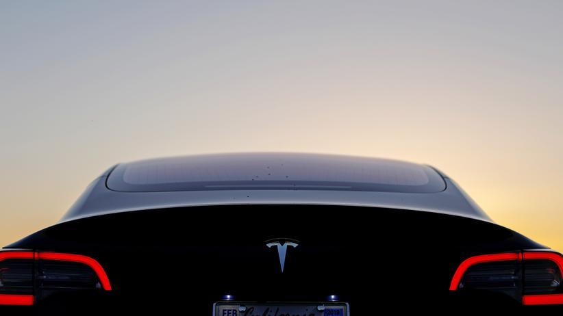 Tesla: Weltanschauung, Kult, One-Man-Show
