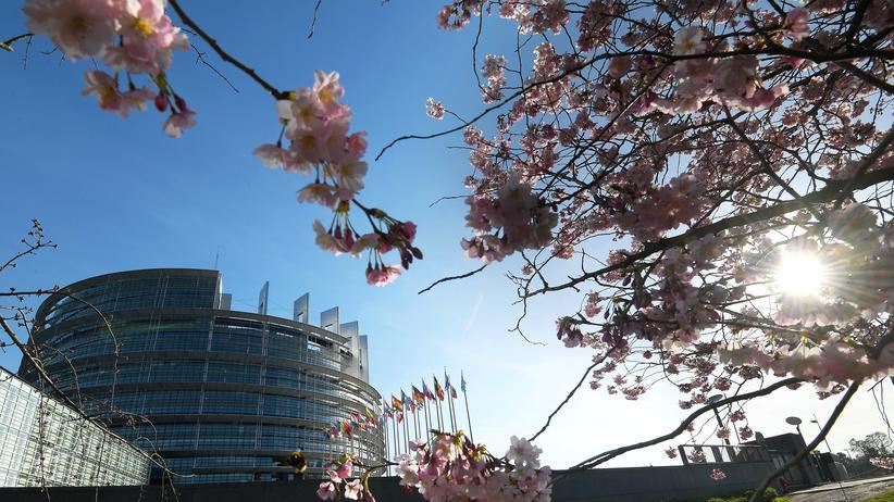 Europaparlament: EU-Abgeordnete stimmen Urheberrechtsreform zu