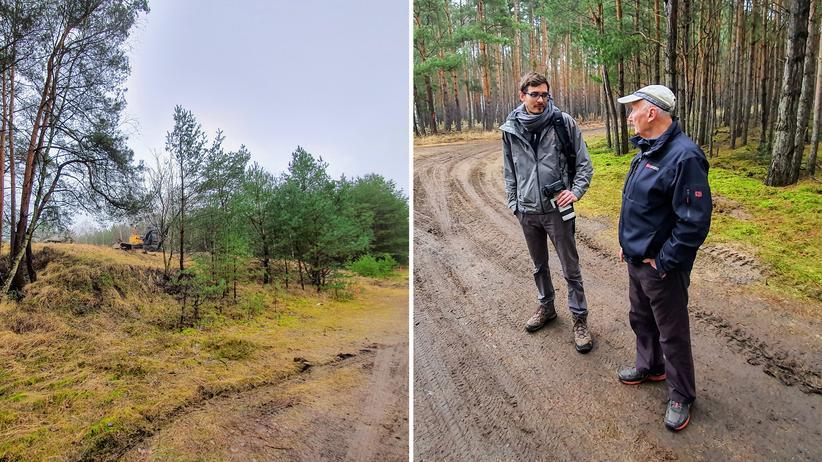 Freienbrink: Ein Ökosystem muss weichen, damit Jobs entstehen können: Der Tesla-Enthusiast und der Förster auf ihrem Waldspaziergang.