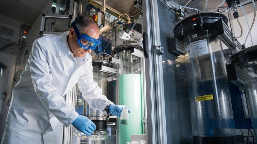 Schwarzheide: BASF baut Fabrik für Batterieteile in Brandenburg