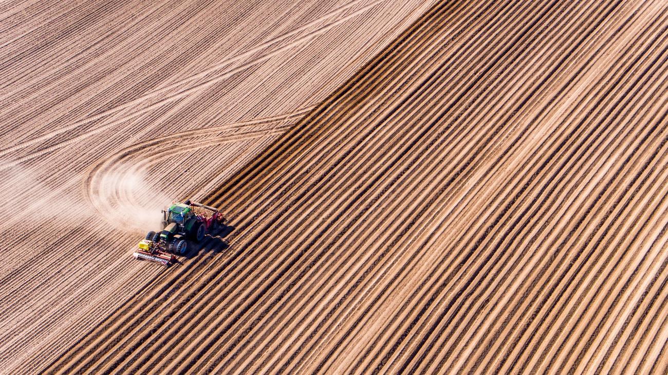 Landwirtschaft: Am Rande des Steppenklimas