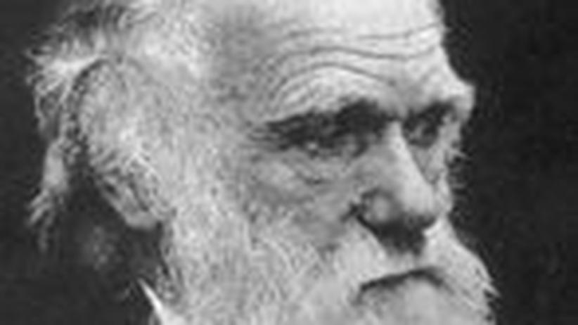 Entstehung der Arten: Darwins Reise zur Erkenntnis der Evolution