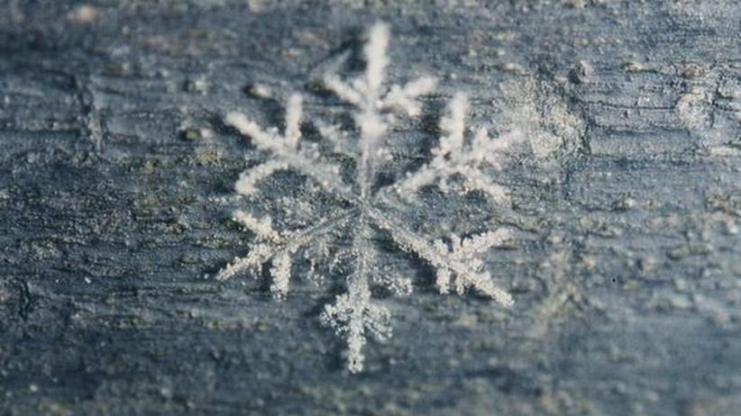 Adventskalender – Türchen 5: Wie wandelbar ist Eis?