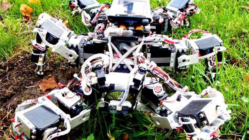 Robotik: Der sechsbeinige Roboter ist den amerikanischen Kakerlaken nachempfunden, und er lernt sich,  anhand eines Chaosprozesses, wie eine zu verhalten