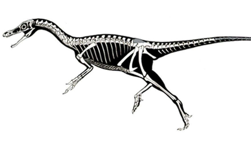 Dinosaurier radiometrische Datierung