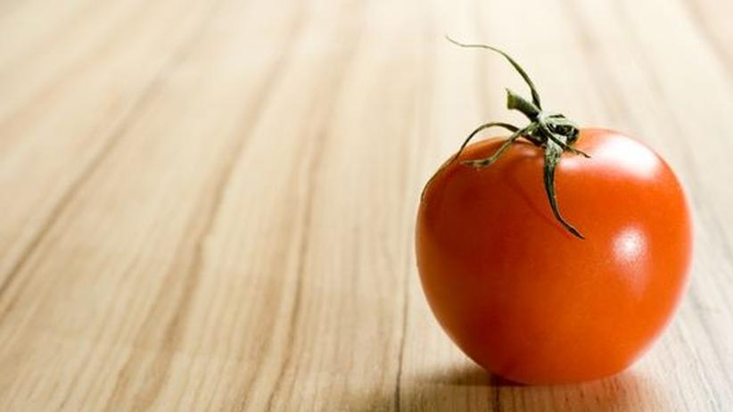 Genmanipulierte Tomate: 45 Tage knackfrisch