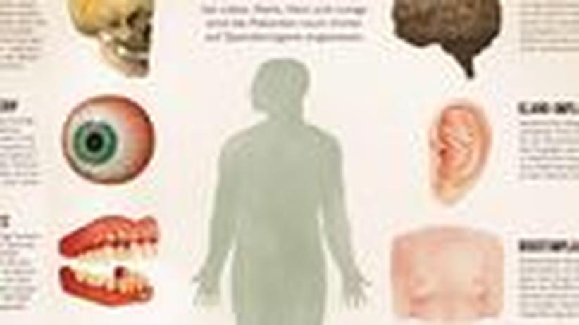 Medizin: In Teilen austauschbar