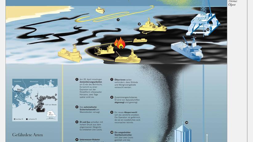 Ölpest: Weg mit dem Öl
