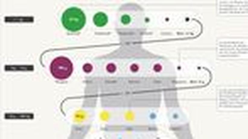 Infografik: Die Bausteine des Menschen