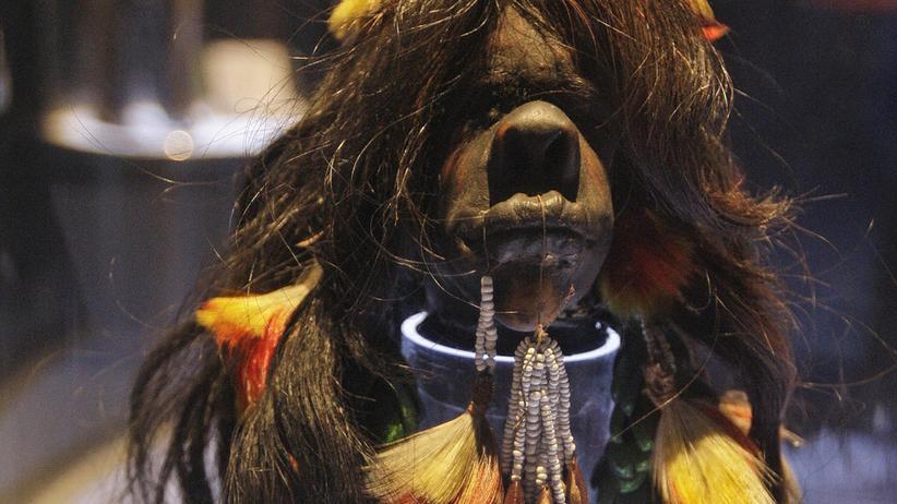 Ausstellung St. Gallen: Was unterscheidet den Indianer-Schrumpfkopf von dem des Ägypters?