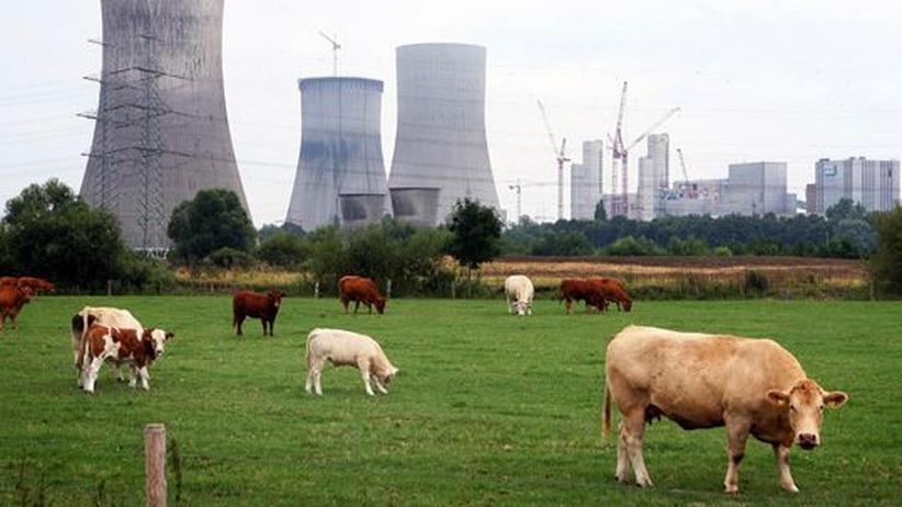 Kernkraftwerke: Ländliche Idylle vor dem 1989 stillgelegten Kernkraftwerk THR-300 in Hamm-Uentrop. Es ging als Prototyp neuer KKW ohne Brennstäbe 1983 ans Netz