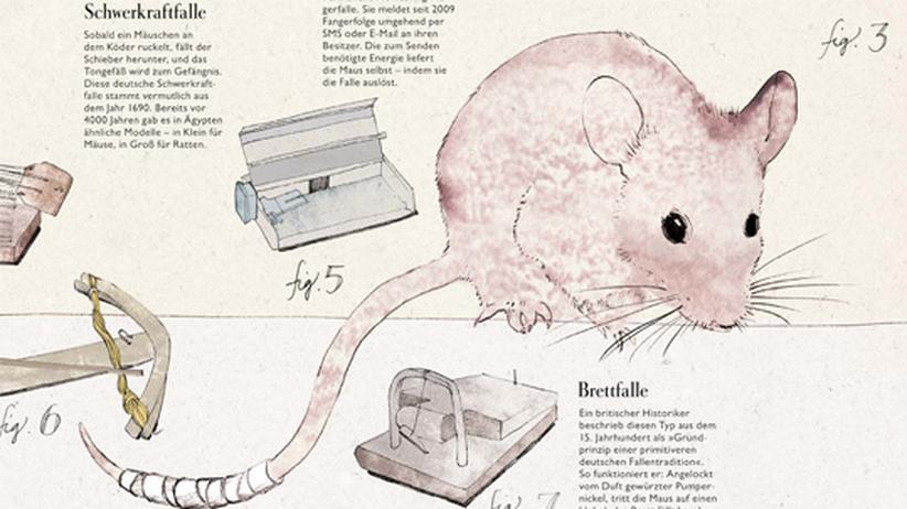 Infografik: Evolution der Mausefallen