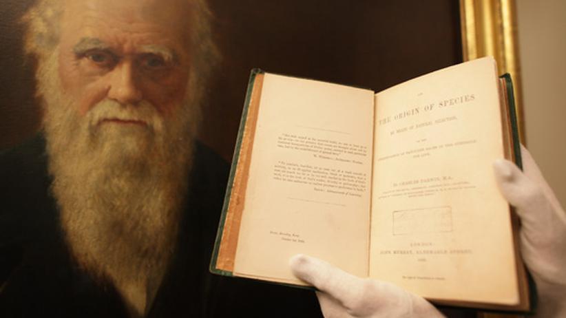 Darwin und Wallace: Disput um den wahren Begründer der Evolutionstheorie