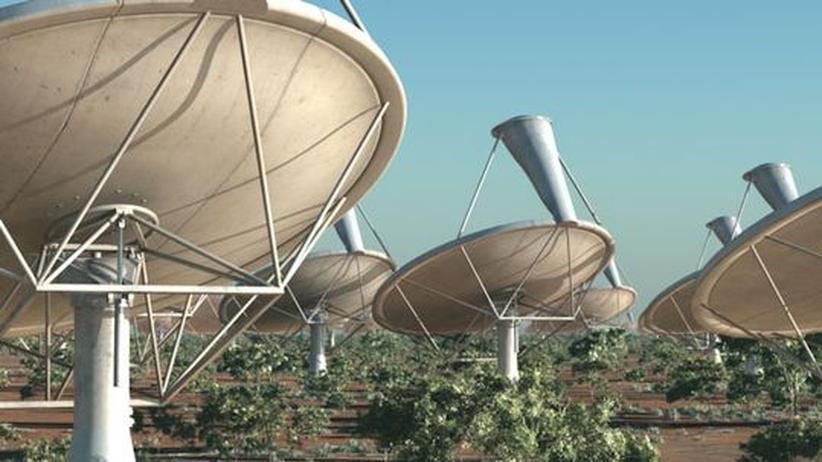 Eine Animation zeigt einige der Teleskopschüsseln, die zusammengeschaltet die größte Anlage dieser Art ergeben sollen.