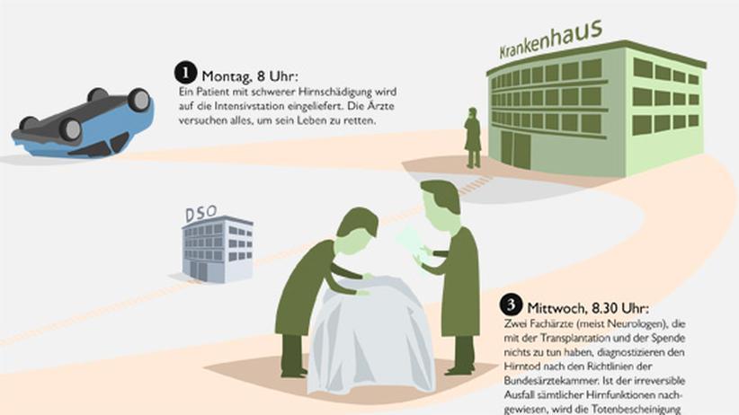 Wissen in Bildern: Organspende