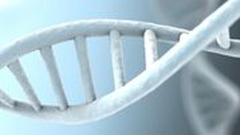 Das menschliche Genom und damit jegliche vererbbaren Informationen sind in der Doppelhelix des DNA-Moleküls gespeichert.