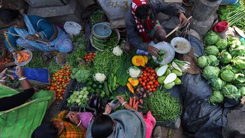 Geschmackssinn: Die Vorliebe für Schimmelkäse steckt im Erbgut