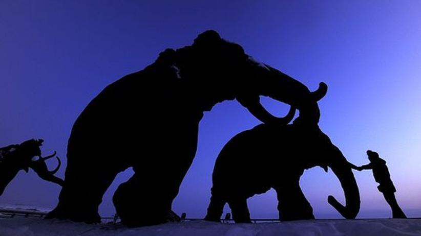 Paläogenetik: Mal eben ein Mammut klonen