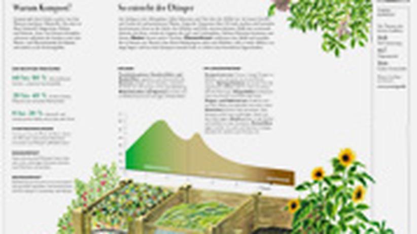 Wissen in Bildern: Klicken Sie auf das Bild, um die Grafik als PDF herunterzuladen.