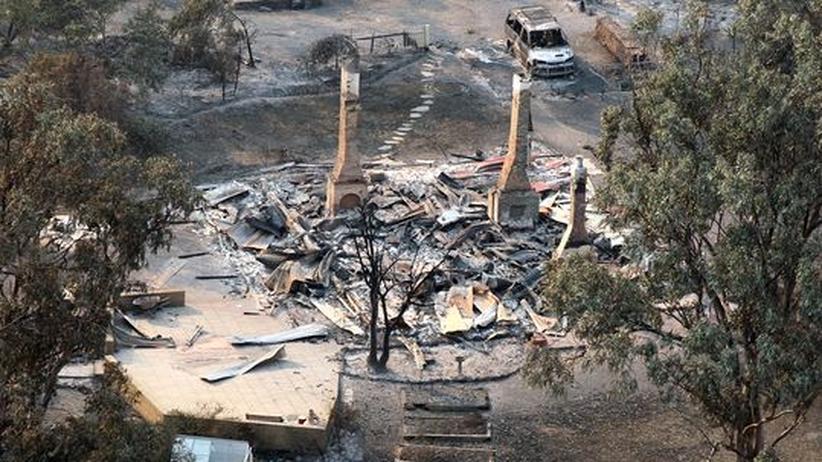 Wetterextreme: Rekordhitze und Buschfeuer beherrschen Australien