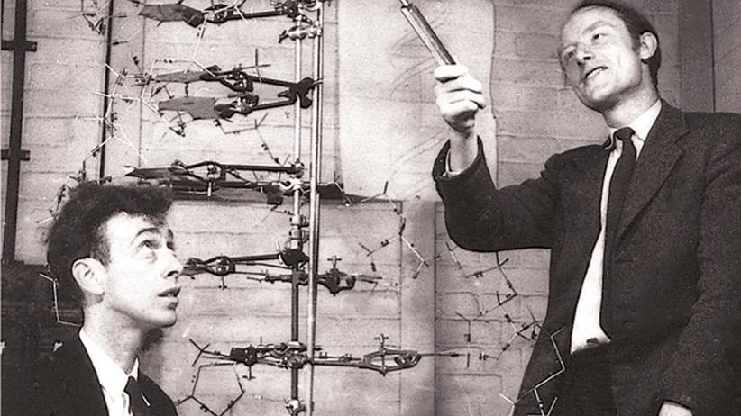 Francis Crick und James Watson: Zwei Chaoten knacken die DNA