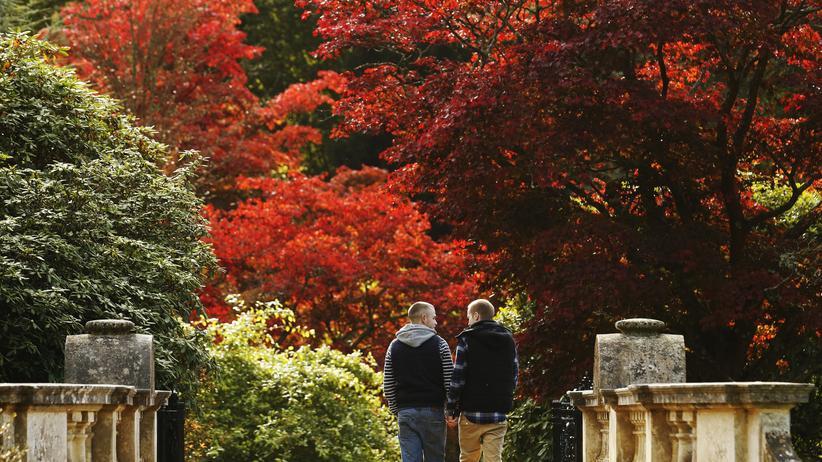 Psychologie: Zwei Männer spazieren Hand in Hand in einem Park.