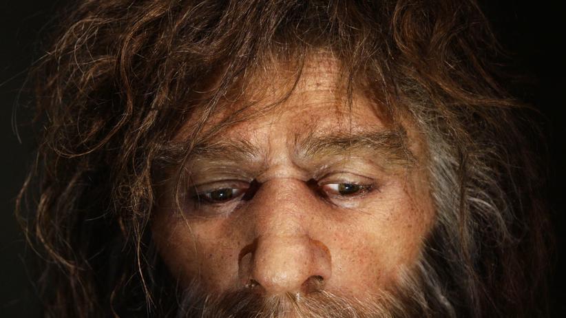 Paläogenetik: Letzte Hürde für die Wiederbelebung des Neandertalers