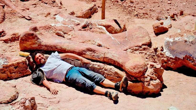 Einer der Forscher neben einem Dinosaurierknochen