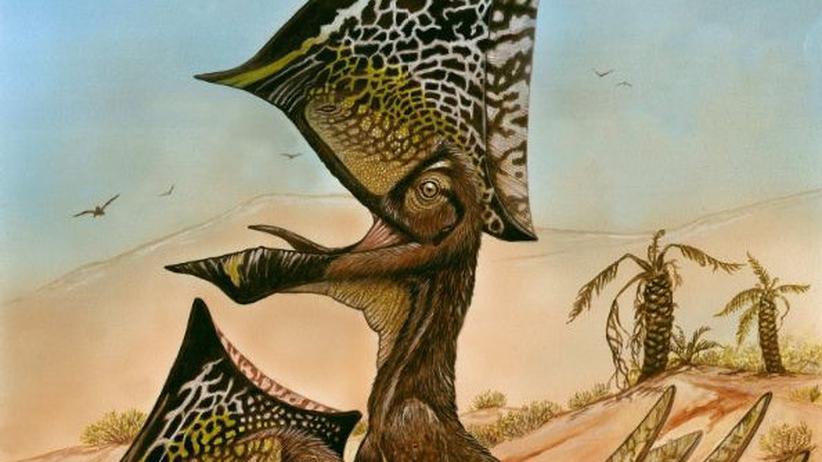 Paläontologie: Der Irokese unter den Flugsauriern