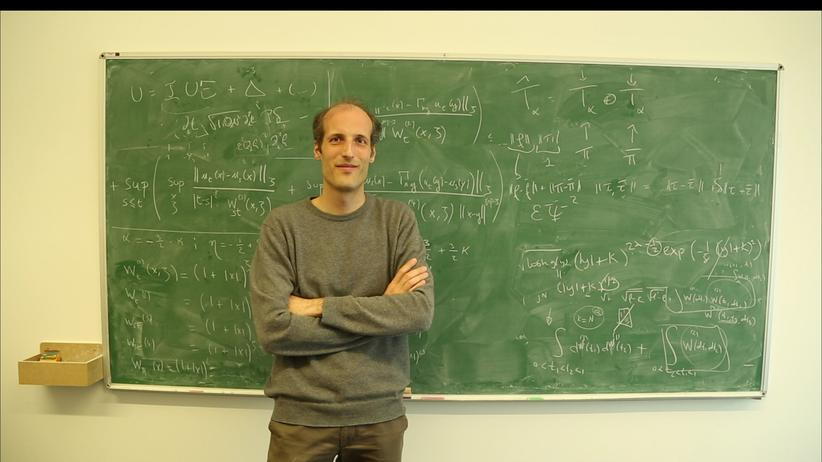 Martin Hairer Mathematik Fields Medaille