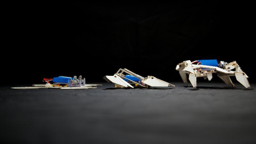 Origami: Ein Roboter aus Eselsohren und Falten