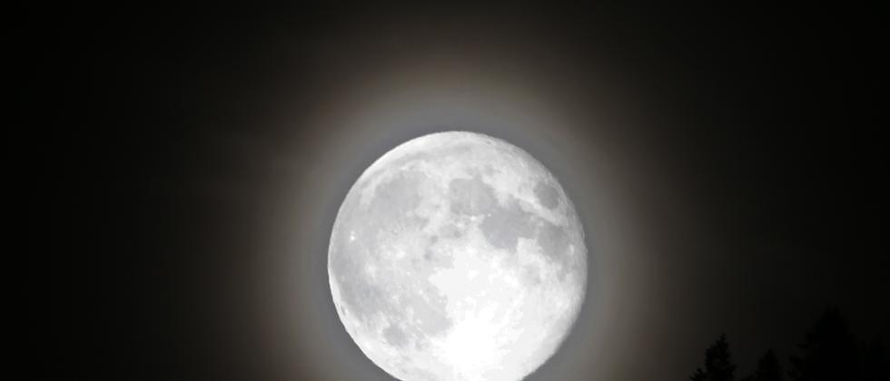 Dunkelheit: Das Alphabet der Nacht vom Zubettgehen bis zum Aufstehen