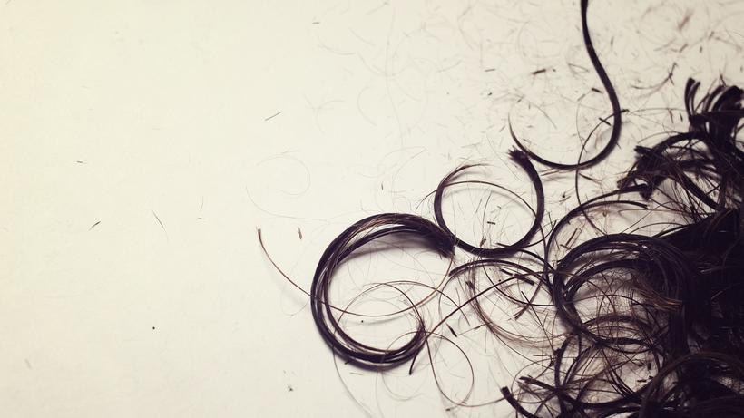 Forensik: Um ein Haar   ZEIT ONLINE