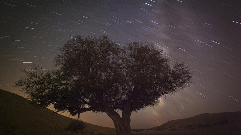 Wissen, Perseiden 2015, Kometen, Stern, Astronomie, Weltraum, Wetter