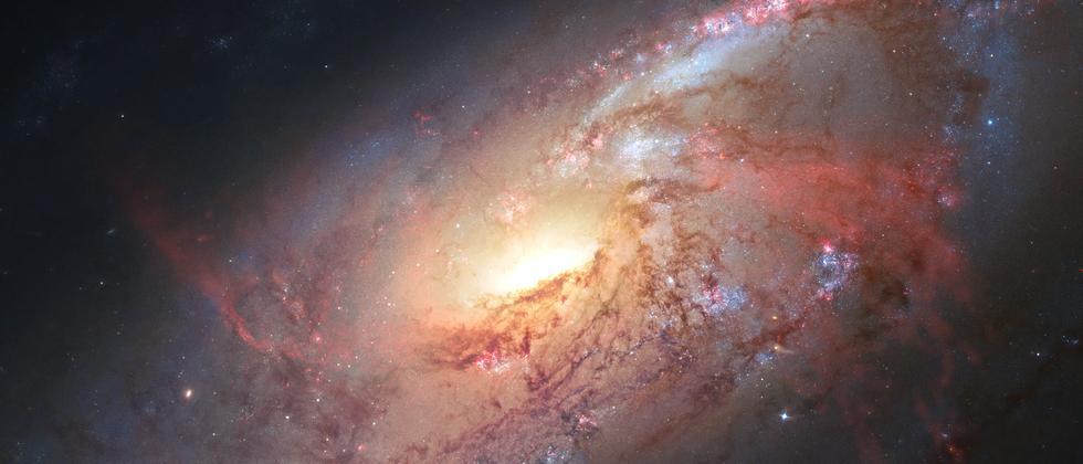 Gravitationswellen: Gesucht: Einsteins letztes Hirngespinst