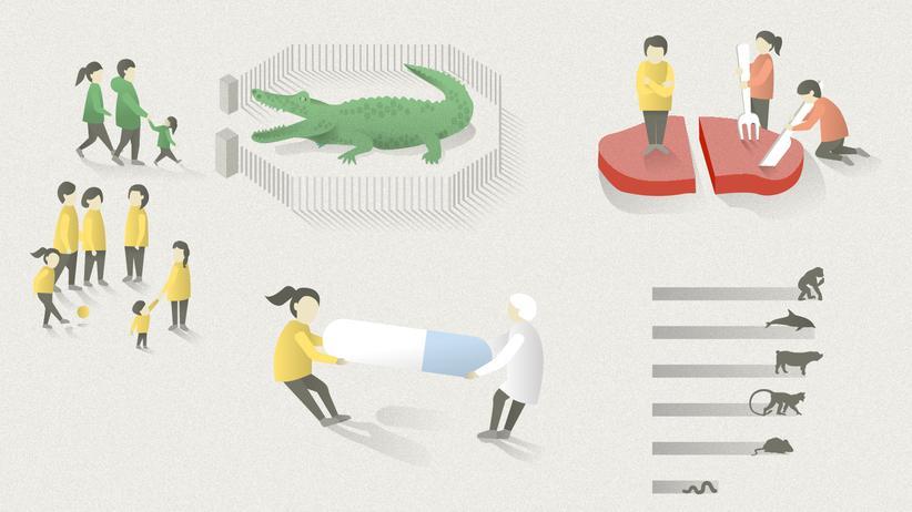 Tierschutz: Forscht an Würmern, esst Insekten!
