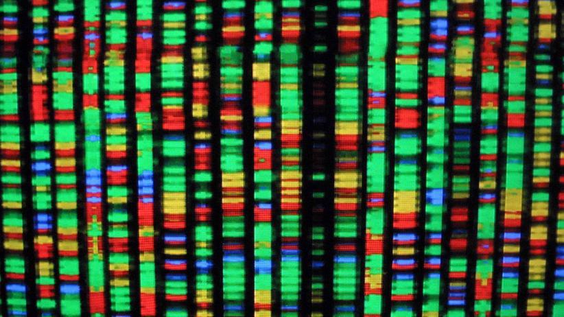 Gentherapie: Erbgut manipulieren, um auch Aids zu heilen, Erbkrankheiten, Evolution, Crispr