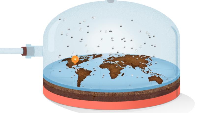 Zika: Mücken, die vor Mücken schützen