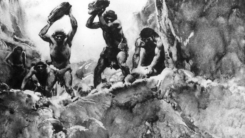 Anthropologie: Neandertaler auf der Jagd